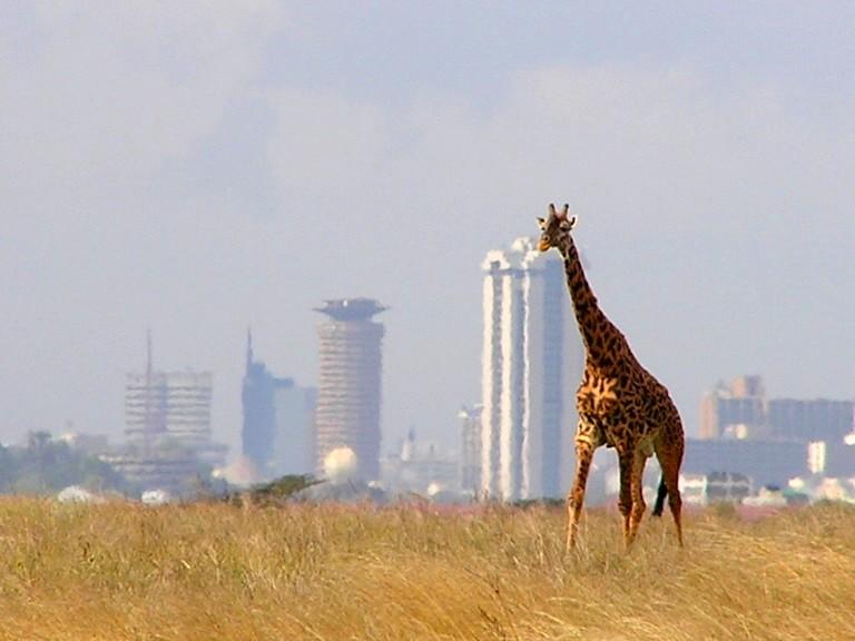 Humanitaire Nairobi