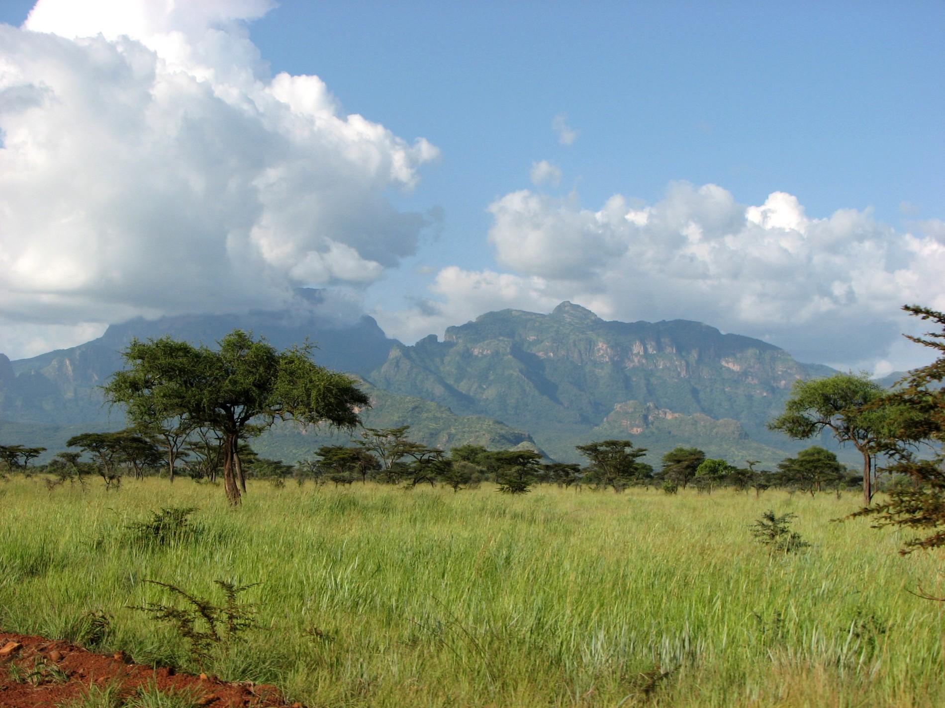 Paysage d'Ouganda